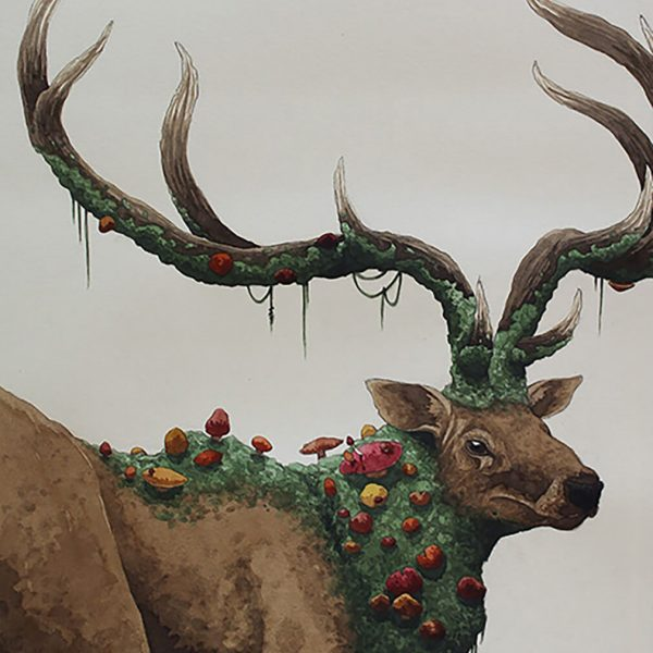 BA Illustration William Black 1 600x600 - تصویر سازی