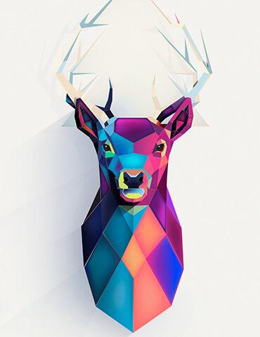 animal illustration lowpoly triangle birgit palma - تصویر سازی