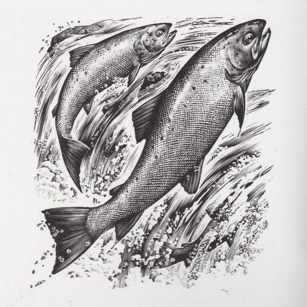 mg fish 600x600 - تصویر سازی