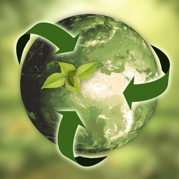 Scents Sustainablity eco conscious fragrance houses we love52 - ساک دستی بازیافت پذیر
